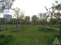 image0102